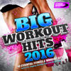 Big Workout Hits 2016 - 40 Essential Fitness & Workout Hits (Perfect for Jogging, Running, Gym and Weight Loss) - Various Artists