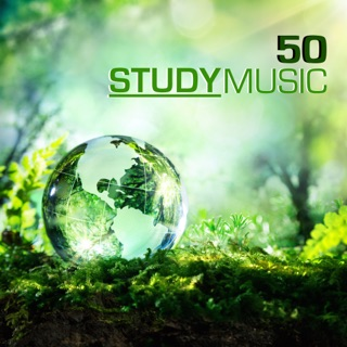 Concentration Music for Studying - Instrumental Study Music
