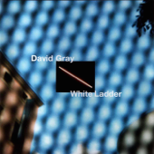 White Ladder-David Gray