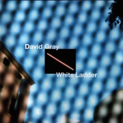 Babylon - David Gray - David Gray