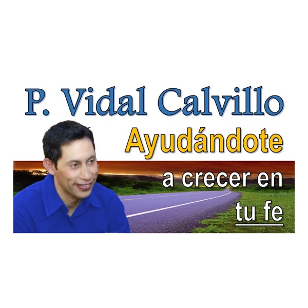 P. Vidal Calvillo