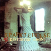 Distorted Ghost - EP