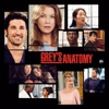 Grey's Anatomy, Season 1 wiki, synopsis