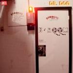 Dr. Dog - Nellie