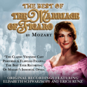 The Marriage of Figaro: The Opera Masters Series
