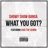 What You Got feat Sage the Gemini Single