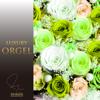 Miraie (Orgel) - Luxury Orgel
