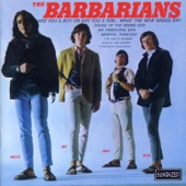 The Barbarians - Are You A Boy Or Are You A Girl?
