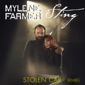Stolen Car (Remixes) - EP