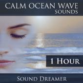 Calm Ocean Wave Sounds - 1 Hour