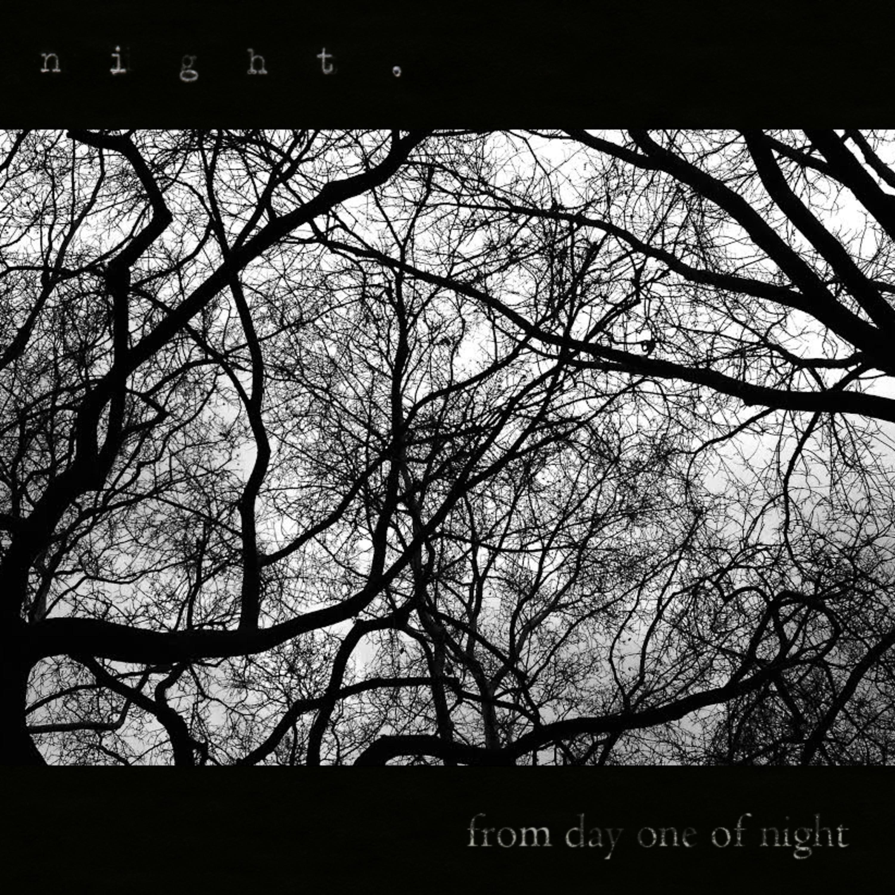 Selections from Day One of Night. - Single