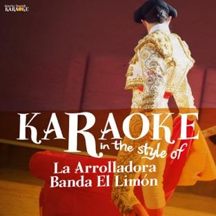 Karaoke (In the Style of La Arrolladora Banda Limon) – Ameritz Spanish Karaoke