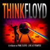 A Tribute to Pink Floyd - Live At Pompeji (Live In Concert) - Think Floyd