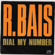 Dial My Number (Extended Version) - R. Bais