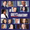 Grey's Anatomy, Season 6 wiki, synopsis