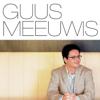 Guus Meeuwis - Brabant kunstwerk