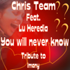 Chris Team - You Will Never Know (feat. Lu Heredia) artwork