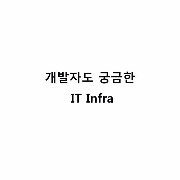 개발자도 궁금한 IT 인프라