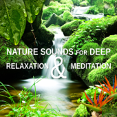 Nature Sounds for Deep Relaxation & Meditation: Music to Quiet Your Mind, Blissful Sleep, Sooth Your Soul, Reiki Healing & Yoga