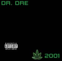 Dr. Dre - The Next Episode artwork