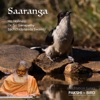 Meditation Tunes Pakshi Bird Saaranga