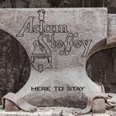 Adam Steffey - Pitching Wedge