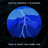Calvin Harris - This Is What You Came For (feat. Rihanna) artwork