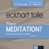 Eckhart Tolle - What Is Meditation?: Realizing the Life That You Are (Unabridged) artwork