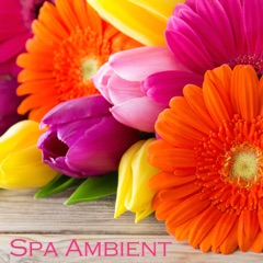 Spa Ambient - Relaxing Zen Spa Music & Background Instrumental Music for Spa Resorts, Spa Massage and Relaxation