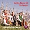 Gamle dansar frå Hardanger - Anders Kjerlands kvartett