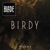 Words (Blonde Remix) - Single