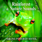 Rainforest & Nature Sounds: 50 Healing Power of Water (Rain, River, Ocean and Sea) Music for Sleep and Relaxation, Free Your Mind & Relax Better, Deep Waves Meditation
