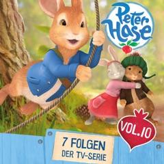 Peter Hase, Volume 10