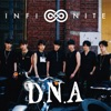 D.N.A / Paradise (Japanese Version) - Single ジャケット写真
