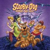 Scooby-Doo Where Are You?, Season 3