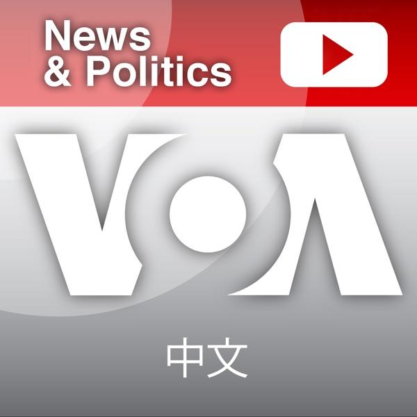 媒体观察 - 美国之音