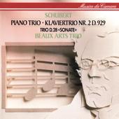 [Download] Piano Trio No. 2 in E-Flat Major, Op. 100, D. 929: II. Andante con moto MP3
