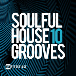 Soulful House Grooves, Vol  10 by Various Artists