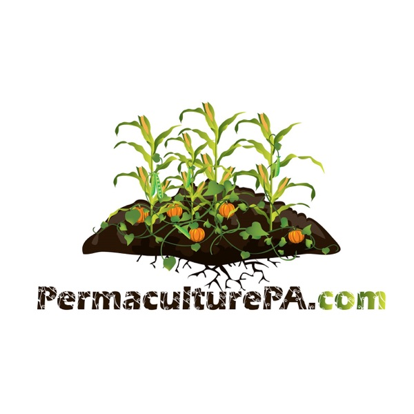 Podcast – FoodProduction101 | Grow Your Own Food | Chicken Care
