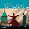 Mevlana Best Of Vol 1