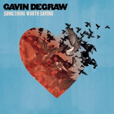 Something Worth Saving - Gavin DeGraw album