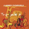 Tricycles (with Paul Wertico & Marc Egan) - Larry Coryell