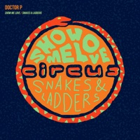 Snakes & Ladders - DOCTOR P
