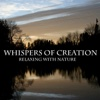Whispers of Creation - The Bore