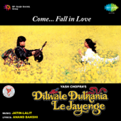 Dilwale Dulhania Le Jayenge (Original Motion Picture Soundtrack) [Dialogues Version]