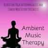Ambient Music Therapy Relaxation Yoga Instrumentalists and Chakra Meditation Specialists