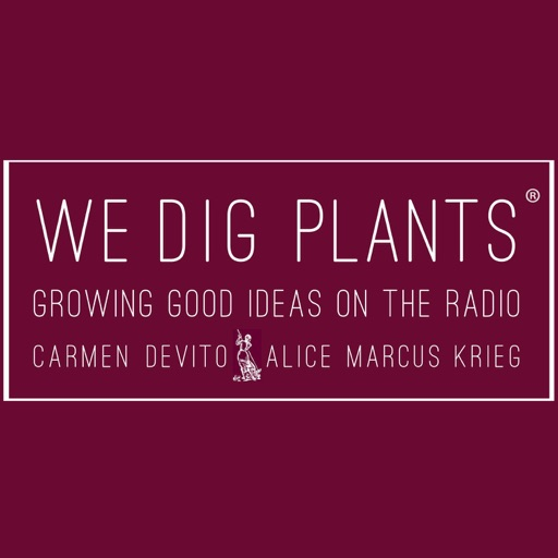 Cover image of We Dig Plants