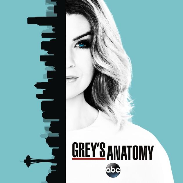 Greys Anatomy Season 13 On Itunes
