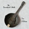 The Drunkard's Walk - Single - Tim O'Brien