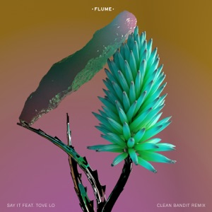 Say It (feat. Tove Lo) [Clean Bandit Remix] - Single Mp3 Download